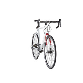 ORBEA Gain D50 grey/white/red